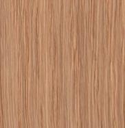 Chêne européen